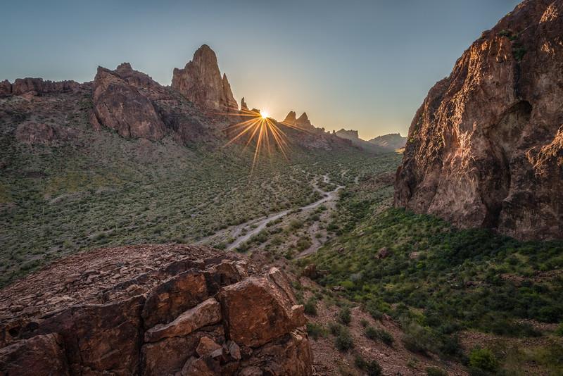 (2020 April 18-19) Kofa NWR.  Arizona.
