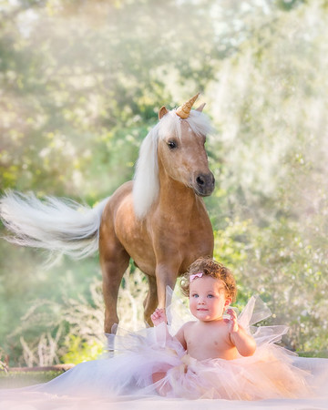 Katie's Unicorn Photoshoot