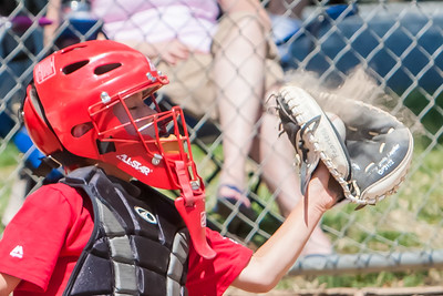2015 Baseball Photos and Video