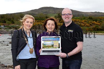 R1521105 GULLION WEBSITE