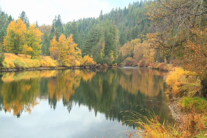 fall 2019 st maries river-1658.jpg