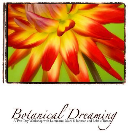 2008 & 2009 Botanical Dreaming Workshops - Boulder, CO