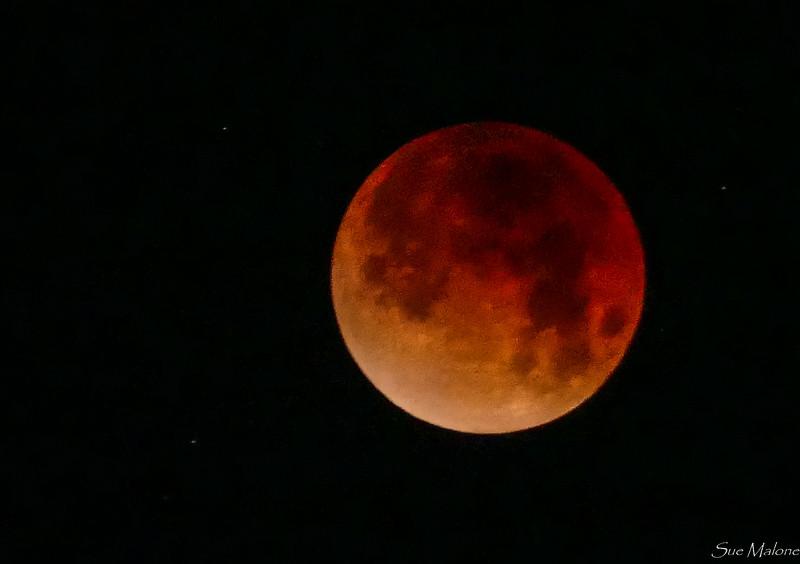 Eclipse at Catalina (5 of 25).jpg