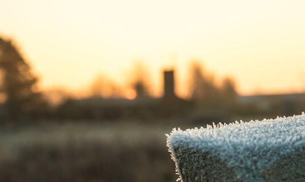 Morgenstund har frost i mund!