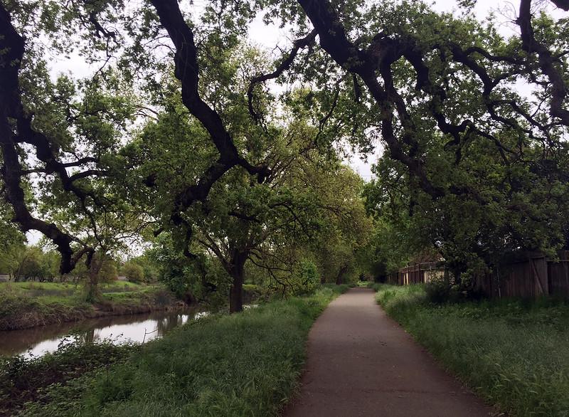 green creek.jpg