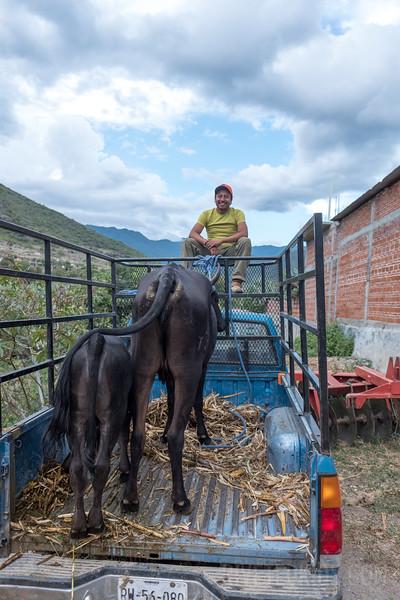 Riveted Kids Camp 2018 - Coding in Oaxaca (186).jpg