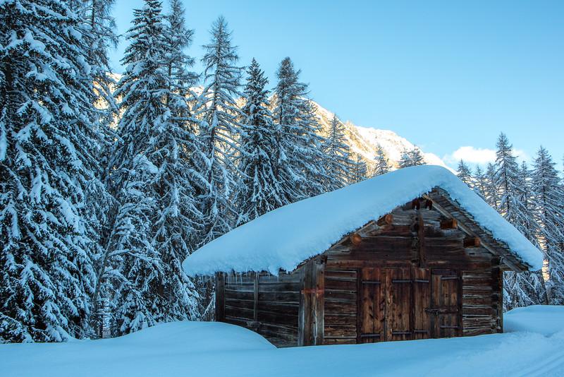 Rheinwald-Winter-D-Aebli-059.jpg