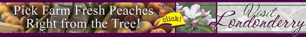 !visit_ad_728x90_upick_peaches.jpg