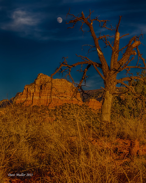 Arizona_Mark_II-20131114-0090_HDR.jpg