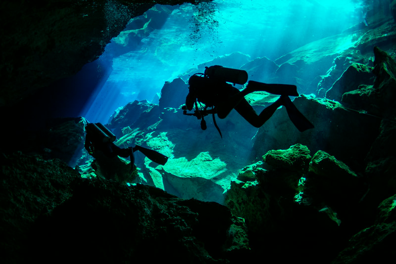 2014 Whale Shark - Cave Adventure-104.jpg