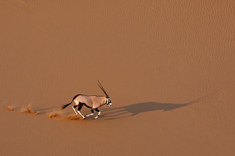Namibia 69A4596.jpg