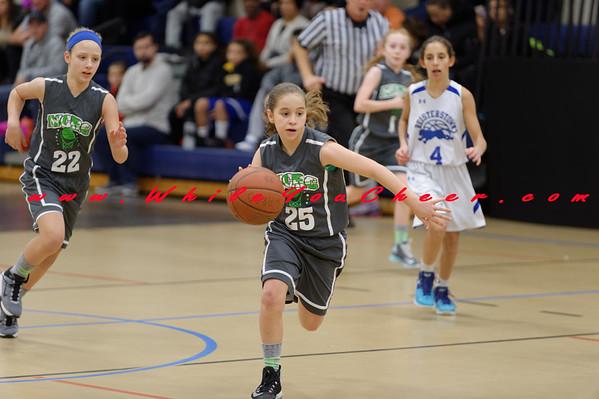 Reisterstown Girls Basketball