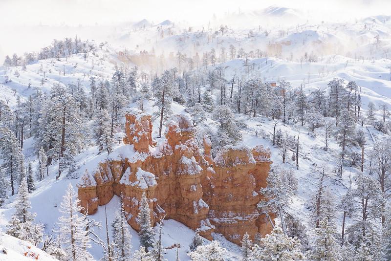 200319 - Bryce Canyon - 00328.jpg