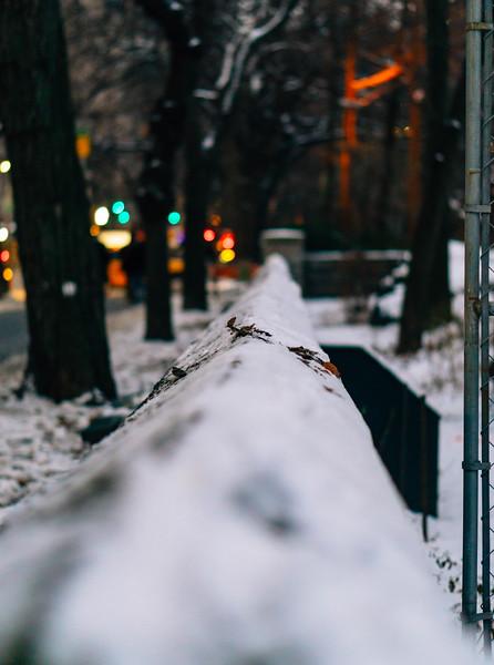Snow ledge central park 1.jpg