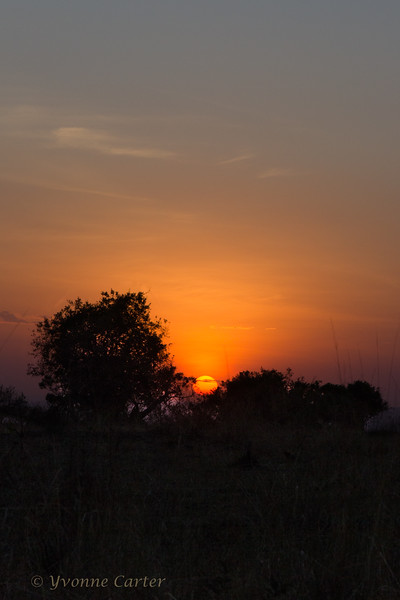 Sunrise 9749.jpg