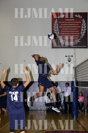 Volleyball Boys Varsity 3/8/19