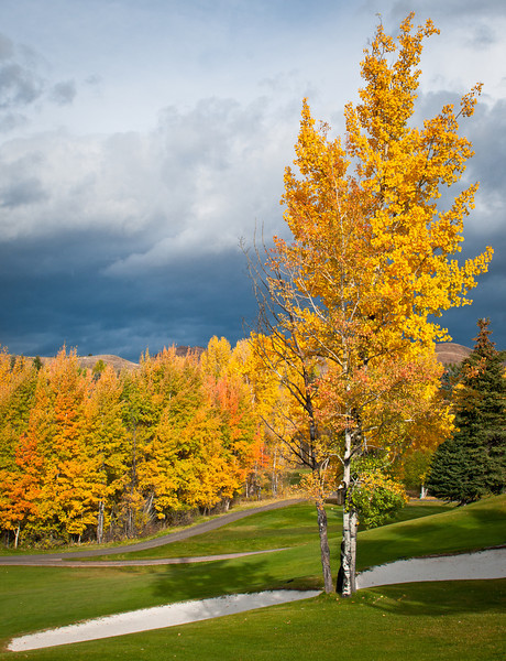 Fall Idaho-17.jpg