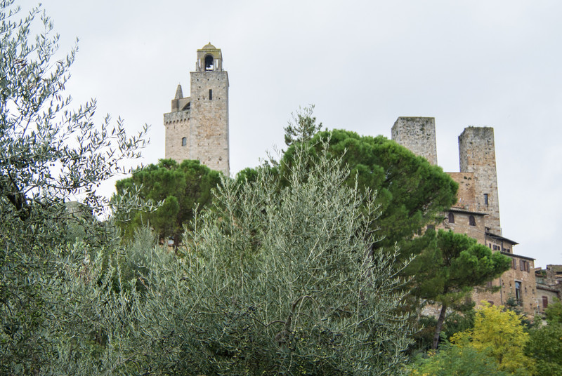 Towers from lower garden