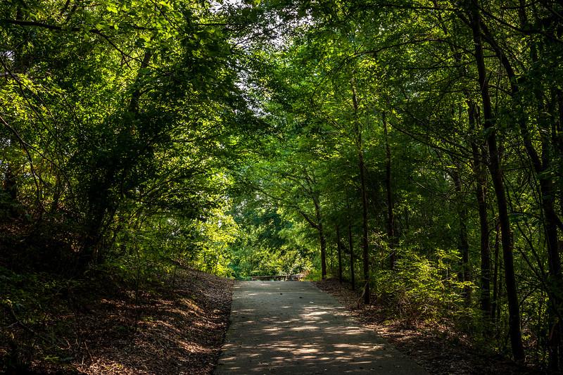 Pathway1.jpg