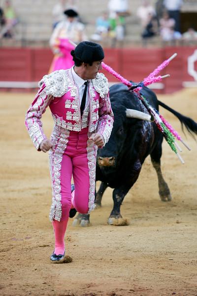 Banderillero pursued by a bull. Bullfight at Real Maestranza bullring, Seville, Spain, 15 August 2006.