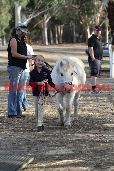 Swan Valley Pony Club Rally