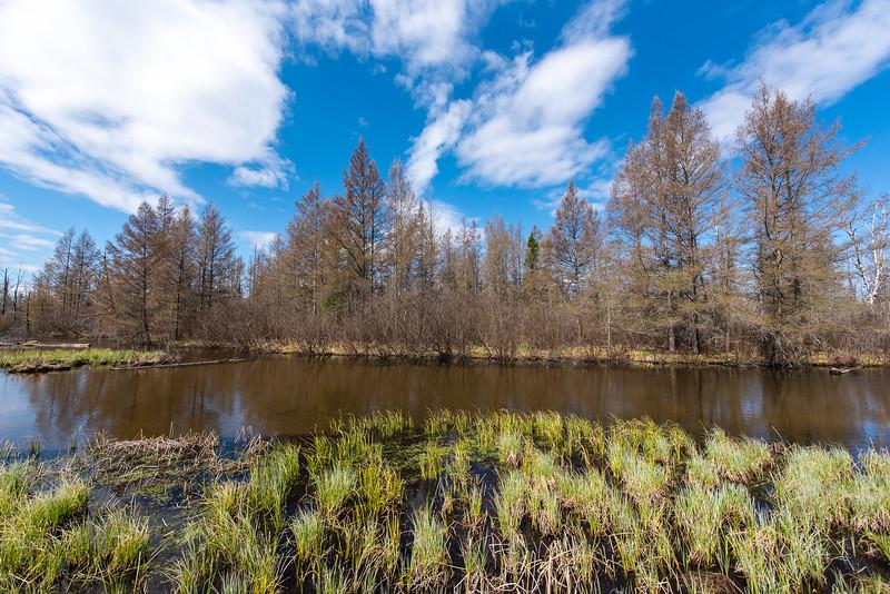 HW_2487-Serenity-Pines-Ct_0021.jpg