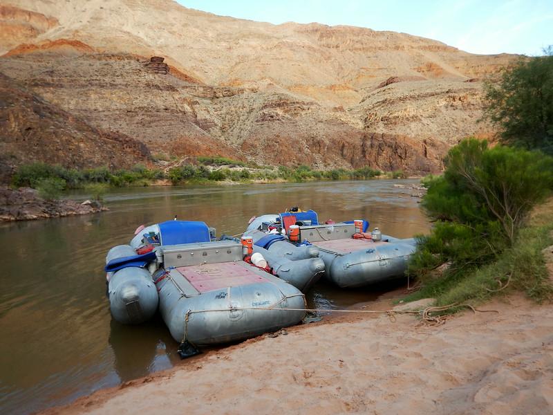 Grand Canyon Rafting Jun 2014 316.jpg