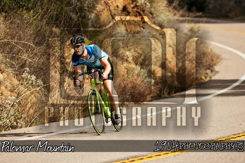 20110116_Palomar Mountain_0482.jpg