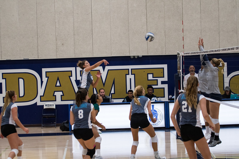 HPU Volleyball-91715.jpg