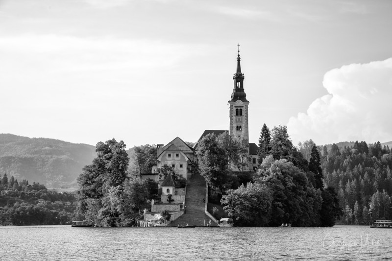 bled_20120628_9967-Recovered.jpg
