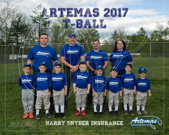 Artemas 2017 TBall Gray