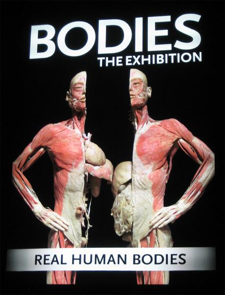 0909 body.jpg