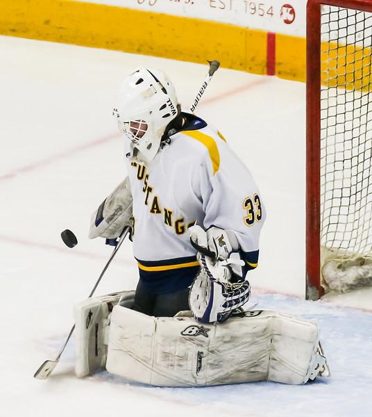 Hockey (9).jpg