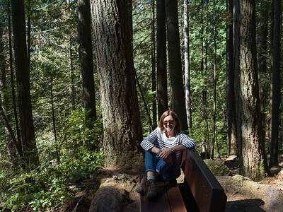Lynn Canyon - North Vancouver
