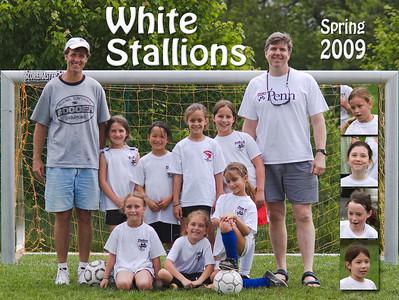 White Stallions 2008 and 2009