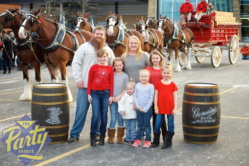 Clydesdale Portraits 156.jpg