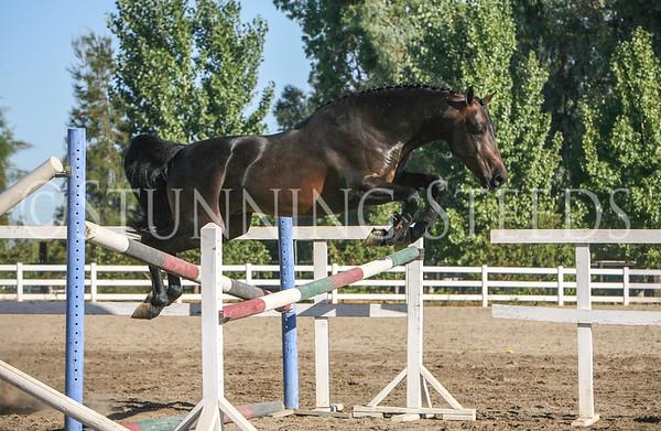 ALB-Stilwell Renaissance-Man jumping