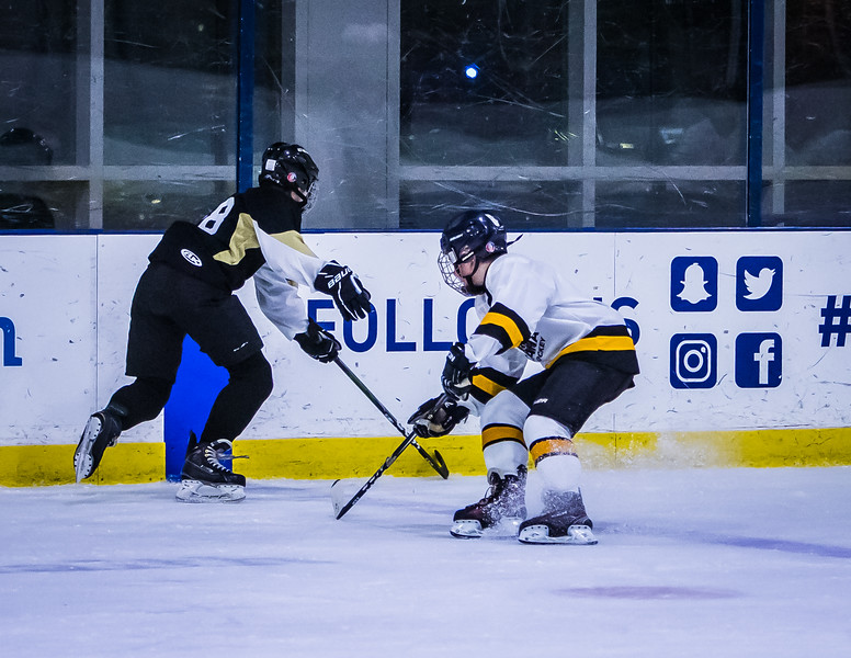 Bruins-130.jpg