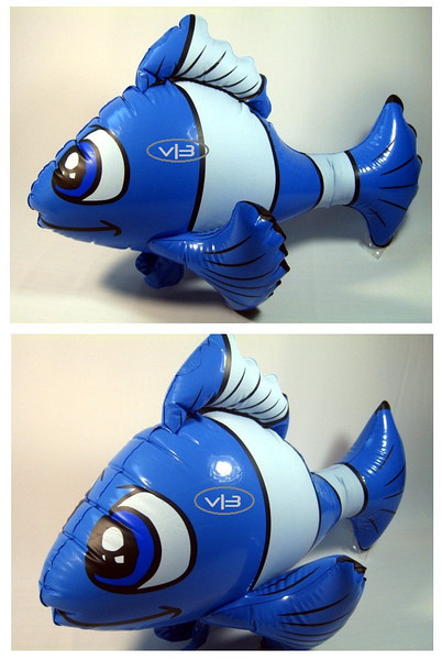 IF- ANIMAL- Nemo BU.jpg