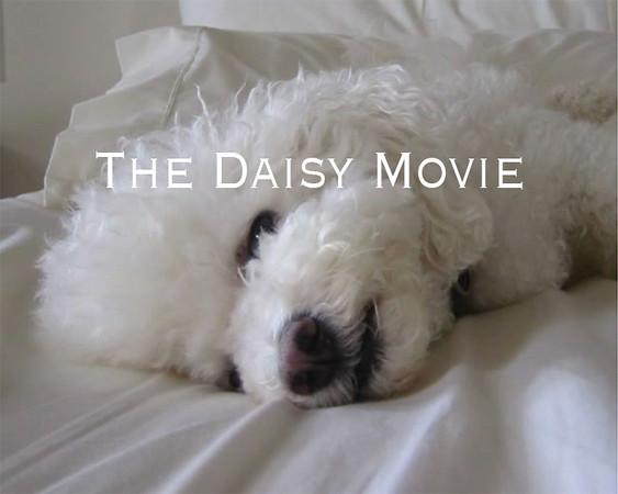 The Daisy Movie