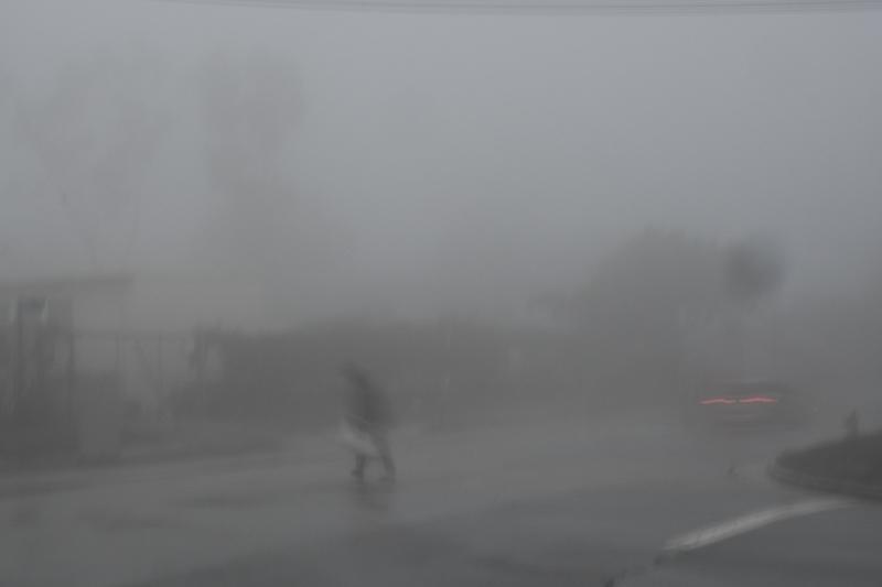 January 17 - Foggy, rainy morning.jpg
