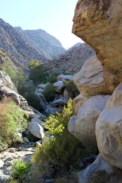 05 Cougar Canyon (122).JPG