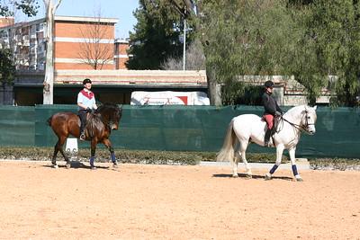 Jerez & Andalusia