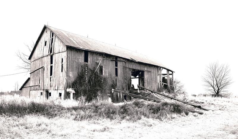 Abandoned Barn, Sarnia Ont
