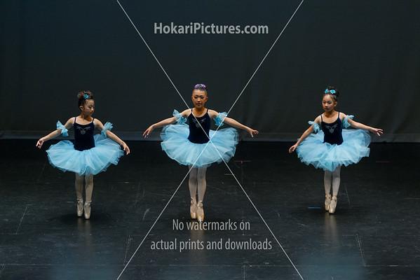 8. Marina Ballet Arts (1)