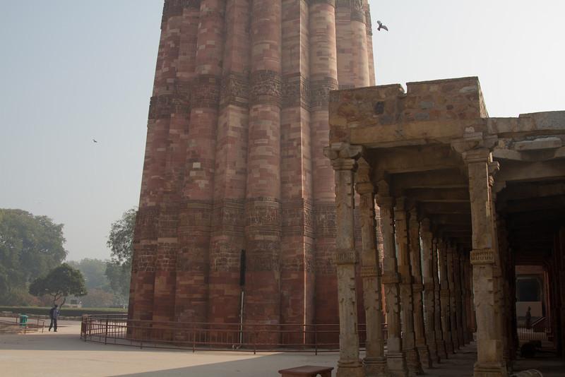 India_2012Feb-5253.jpg