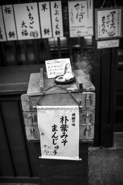 Takayama and Shirakawa 290313 52 .jpg