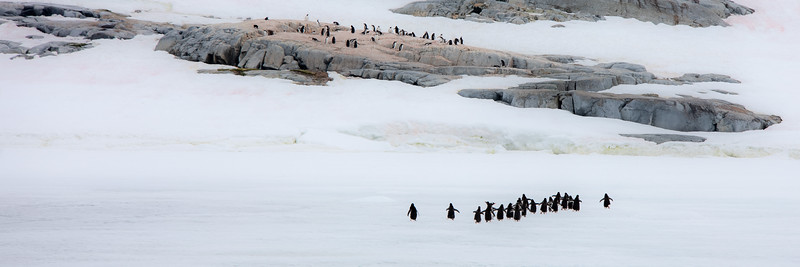 2019_01_Antarktis_04275.jpg