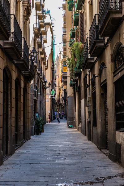Alley in the Gottic Neighborhood