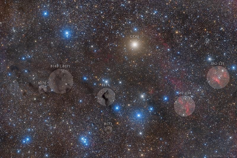 Barnard 174 and surroundings